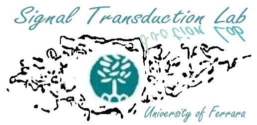 logo-pintonlab.png